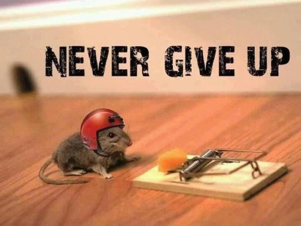 http://www.soulschoolonline.com/wp-content/uploads/2013/09/persistence.jpg